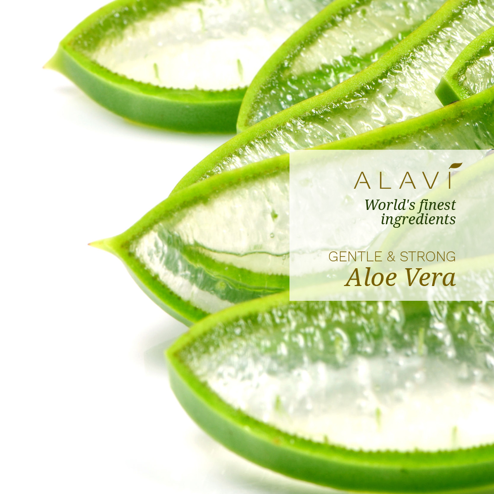 Aloe Vera - gentle & strong