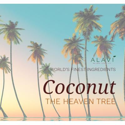 Coconut  - the heaven tree